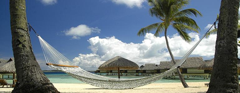 Hammock_-_Polynesiacropped770x300